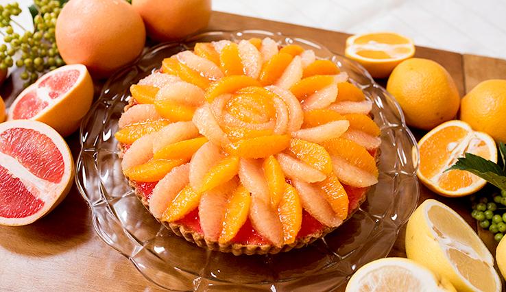 キルフェボン 浜松 ティラミス 柑橘
